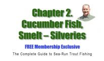 Chapter 2. Cucumber Fish, Smelt - Silveries