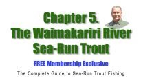 Chapter 5. The Complete Guide to Sea-Run Trout Fishing