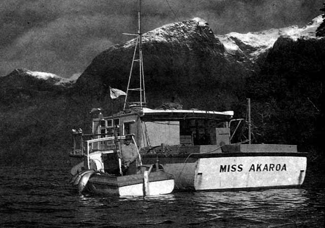Ken Hay's successful pioneering party landed seventeen bluefin tuna weighing a little over 454 kg (1,000 lb) in total from the 'Miss Akaroa' and the smaller 'Mate.'