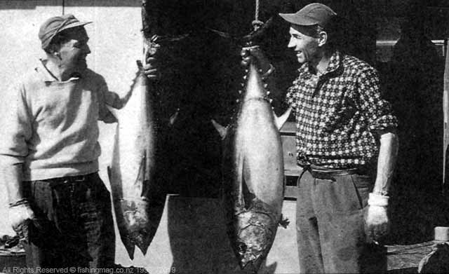 Ken Hay (right) and Murry Barnfield (left) with the first southern bluefin tuna caught in Fiordland waters on game fishing gear. The fish weighed 27.5 kg (61 lb) apiece. Photograph, Dick Marquand.