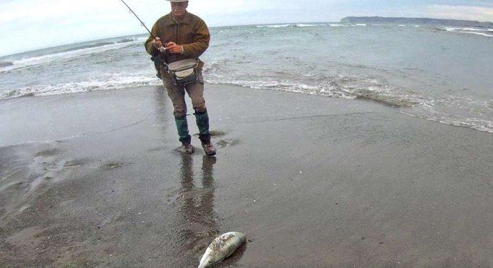 Wairau River and Diversion, Marlborough Salmon and Trout Fishing