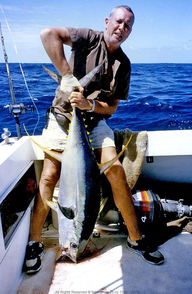 Yellowfin Tuna - Cliff