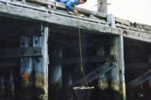 Lowering a drop net. Otago harbour salmon fishing.