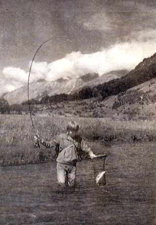 A successful angler nets a brown trout from Diamond Creek.