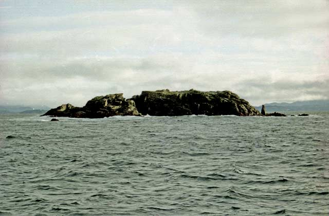 Many small rocky islands litter the north-eastern approaches to Stewart Island. The foul rocky bottom makes a good home for blue cod, moki, and trumpeter.