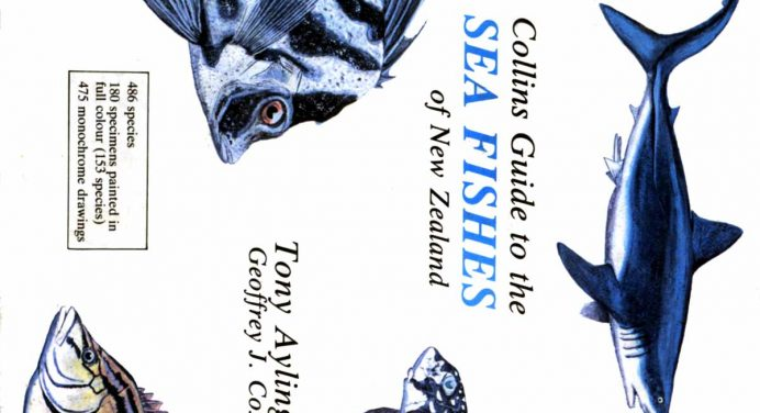 Collins Guide to the Sea Fishes of New Zealand Tony Ayling
