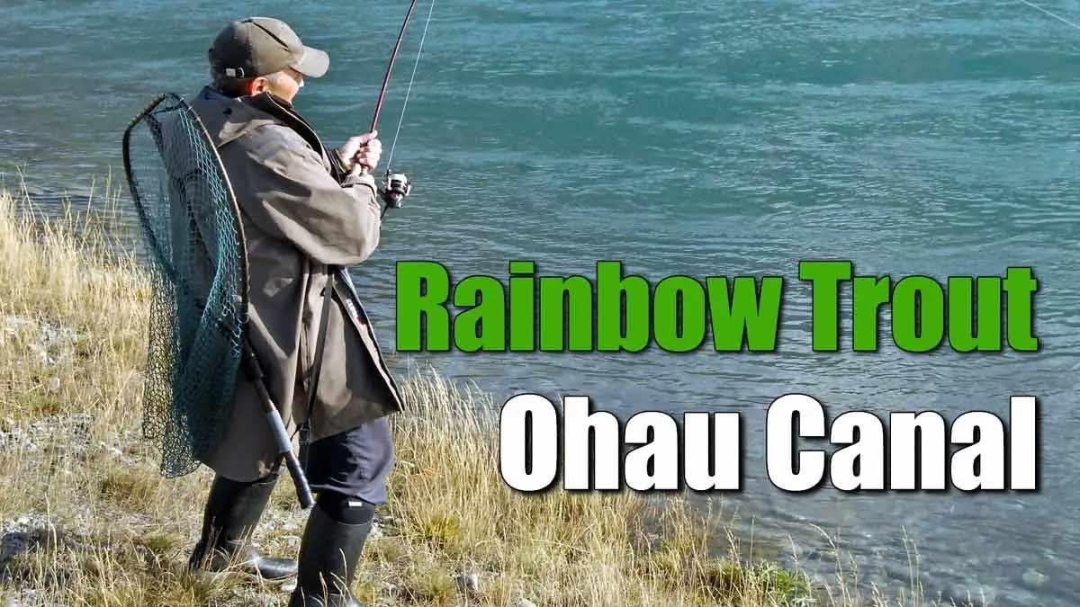 Chris Anchor - Ohau A Canal Trout Fishing.