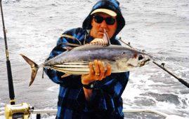 Skipjack Tuna.