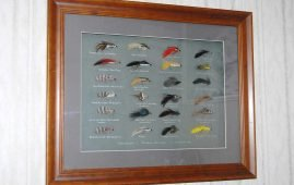 Making a shadow-box to display your trout flies is simply and inexpensive.