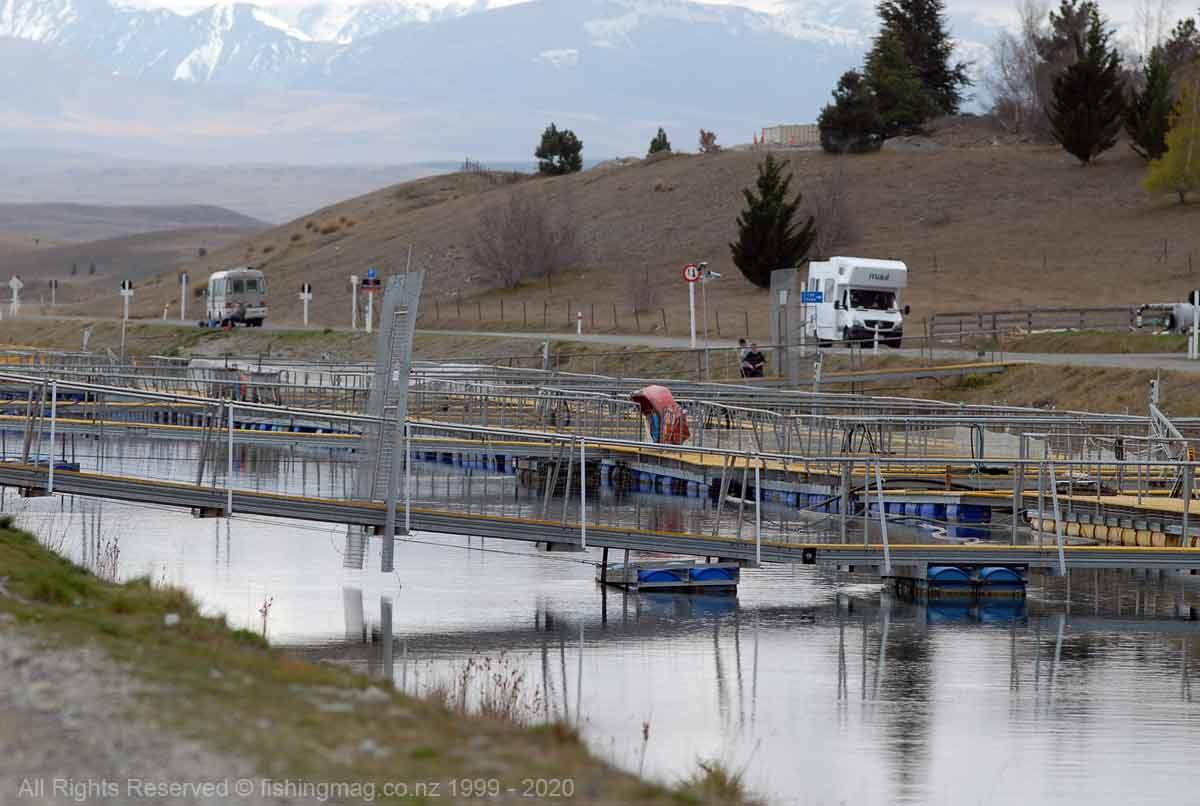 Salmon farm Tekapo Canal. Twizel Canals.