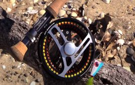 Chasing yellowtail kingfish on saltwater fly - Fishing the Collingwood Flats NZ.