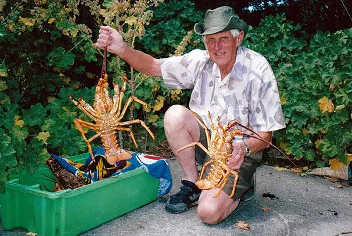 A couple of really big Red Rock Lobsters!