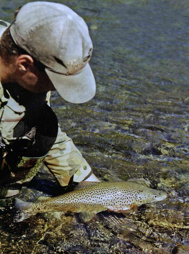 Clear water and a small roll-on indicator helped bring this trout to the bank. Photo courtesy Andy Trowbridge.