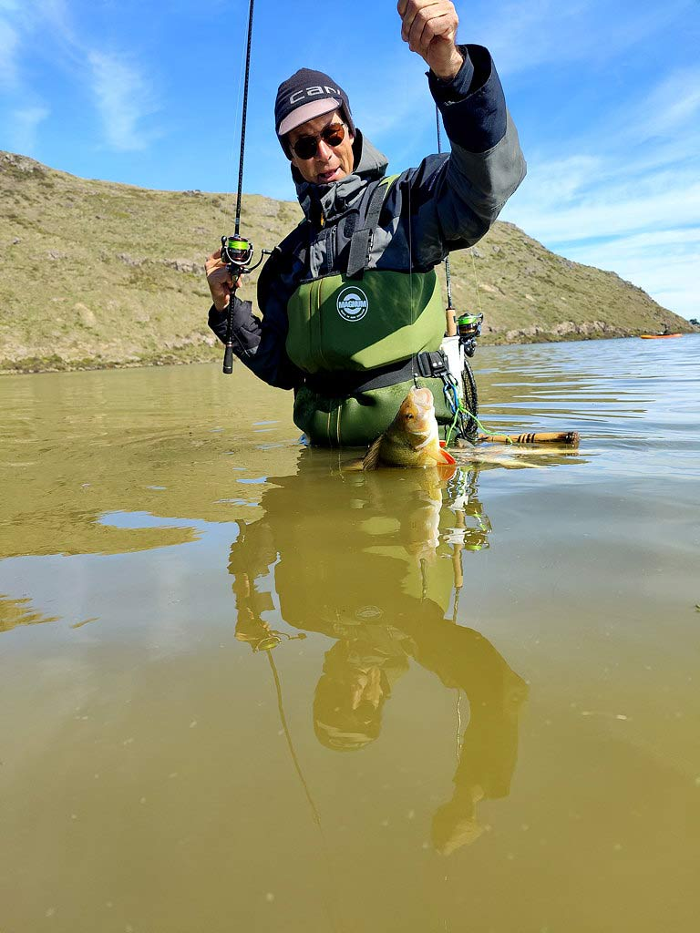 This redfin was taken in a Southland Lake in September 2020 on a dark coloured soft bait - jig head combo. Perch are great fighters and good eating. Judging by the colour of the water most anglers would regard this as low-probability trout water. Photograph courtesy of Roland Brunner.