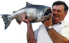 Jim Curline Dunedin Harbour salmon.