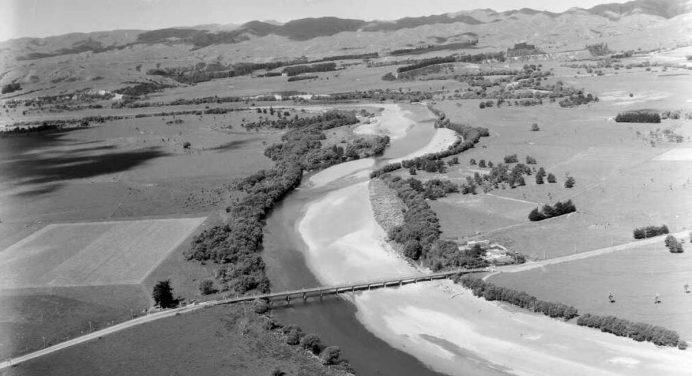 Wairarapa Trout – Kopouranga, Waipoua and Mangatarere Streams