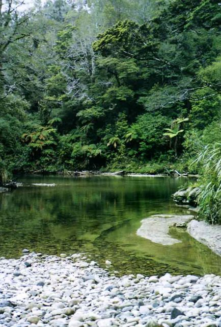 """""""...a beautiful pool - coming around the last bend in the river..."""""""